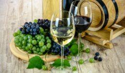 Portské víno – co to je, výroba, historie, charakteristika, druhy