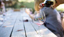 Jak správně servírovat víno, aby vynikla jeho chuť